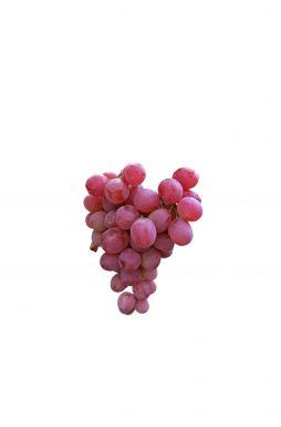 Виноград Аня (Ania)